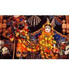 Sri Sri Radha-Nila Madhava close up - Hare Krishna Dhama - Houston, TX
