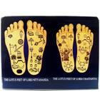 """Acrylic Stand -- Chaitanya & Nityananda Lotus Feet (4"""" x 3"""")"""